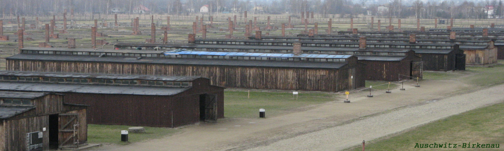 129 - Auschwitz-Birkenau barracks.jpg